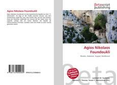 Agios Nikolaos Foundoukli kitap kapağı