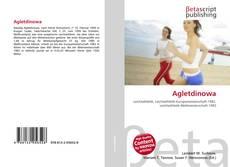 Bookcover of Agletdinowa