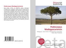 Bookcover of Podocarpus Madagascariensis