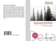 Bookcover of Podocarpus Neriifolius