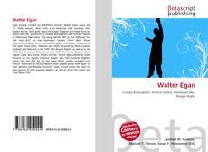 Walter Egan kitap kapağı