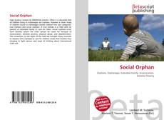 Bookcover of Social Orphan