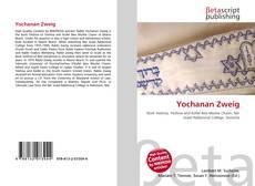Couverture de Yochanan Zweig