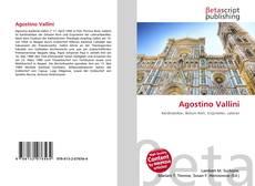 Capa do livro de Agostino Vallini