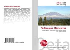 Bookcover of Podocarpus Glomeratus