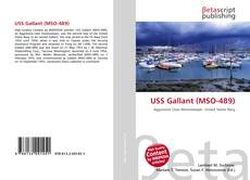 Bookcover of USS Gallant (MSO-489)