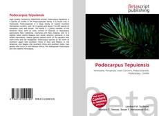 Bookcover of Podocarpus Tepuiensis