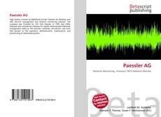 Bookcover of Paessler AG
