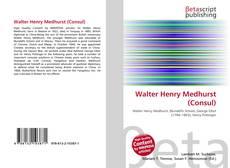 Portada del libro de Walter Henry Medhurst (Consul)