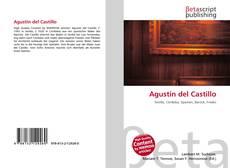 Portada del libro de Agustin del Castillo