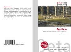 Capa do livro de Aguateca