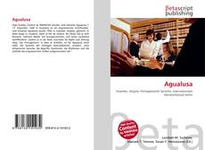 Capa do livro de Agualusa