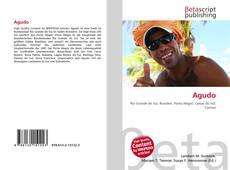 Bookcover of Agudo