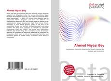 Bookcover of Ahmed Niyazi Bey