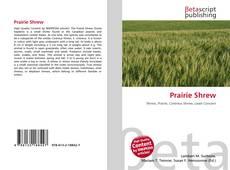 Bookcover of Prairie Shrew