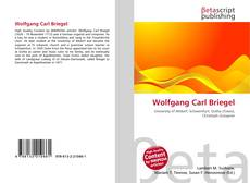Bookcover of Wolfgang Carl Briegel