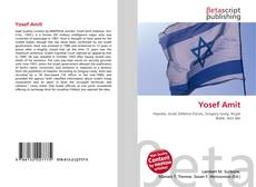 Bookcover of Yosef Amit