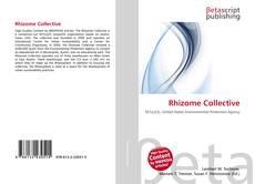 Bookcover of Rhizome Collective