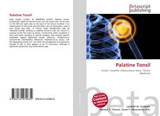 Bookcover of Palatine Tonsil