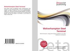 Wolverhampton Steel Terminal kitap kapağı