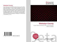 Bookcover of Wolsztyn County