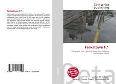 Buchcover von Felixstowe F.1