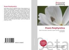 Buchcover von Praxis Porphyretica
