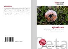 Xyloschizon kitap kapağı