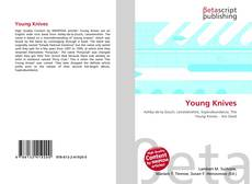 Bookcover of Young Knives
