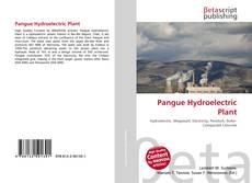 Borítókép a  Pangue Hydroelectric Plant - hoz