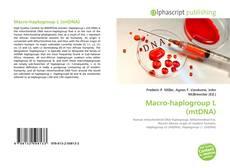 Macro-haplogroup L (mtDNA)的封面
