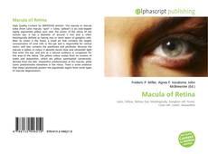 Buchcover von Macula of Retina