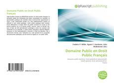 Couverture de Domaine Public en Droit Public Français
