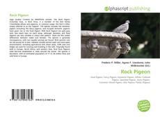 Portada del libro de Rock Pigeon