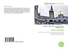 Bookcover of Felix Granda