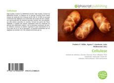 Bookcover of Cellulose