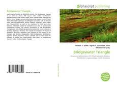 Bookcover of Bridgewater Triangle