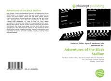Обложка Adventures of the Black Stallion
