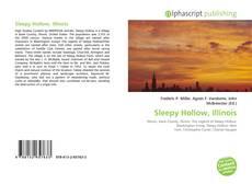 Sleepy Hollow, Illinois的封面