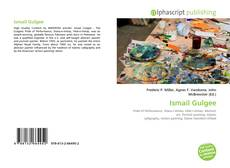 Bookcover of Ismail Gulgee