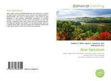 Buchcover von Acer Spicatum