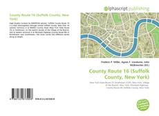 Bookcover of County Route 16 (Suffolk County, New York)