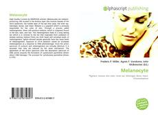 Bookcover of Melanocyte