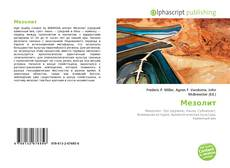Bookcover of Мезолит