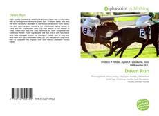 Bookcover of Dawn Run