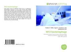 Borítókép a  M13 bacteriophage - hoz
