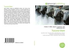 Bookcover of Tucuruí Dam