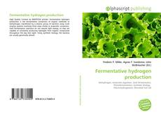 Bookcover of Fermentative hydrogen production