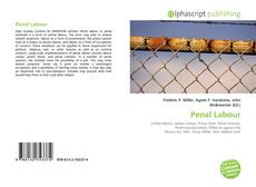 Bookcover of Penal Labour