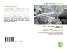 Bookcover of Roche Magmatique